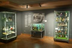 2.-Muzeum-Dobranocek